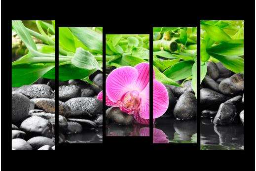 Модульная картина Бамбук и розовая орхидея